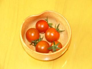 tomato5tu