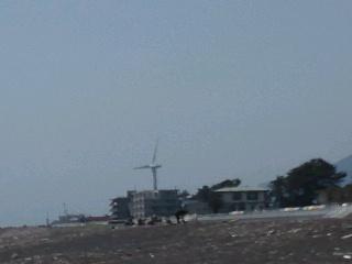ゴールデンウィークby<br />  静岡市大浜公園